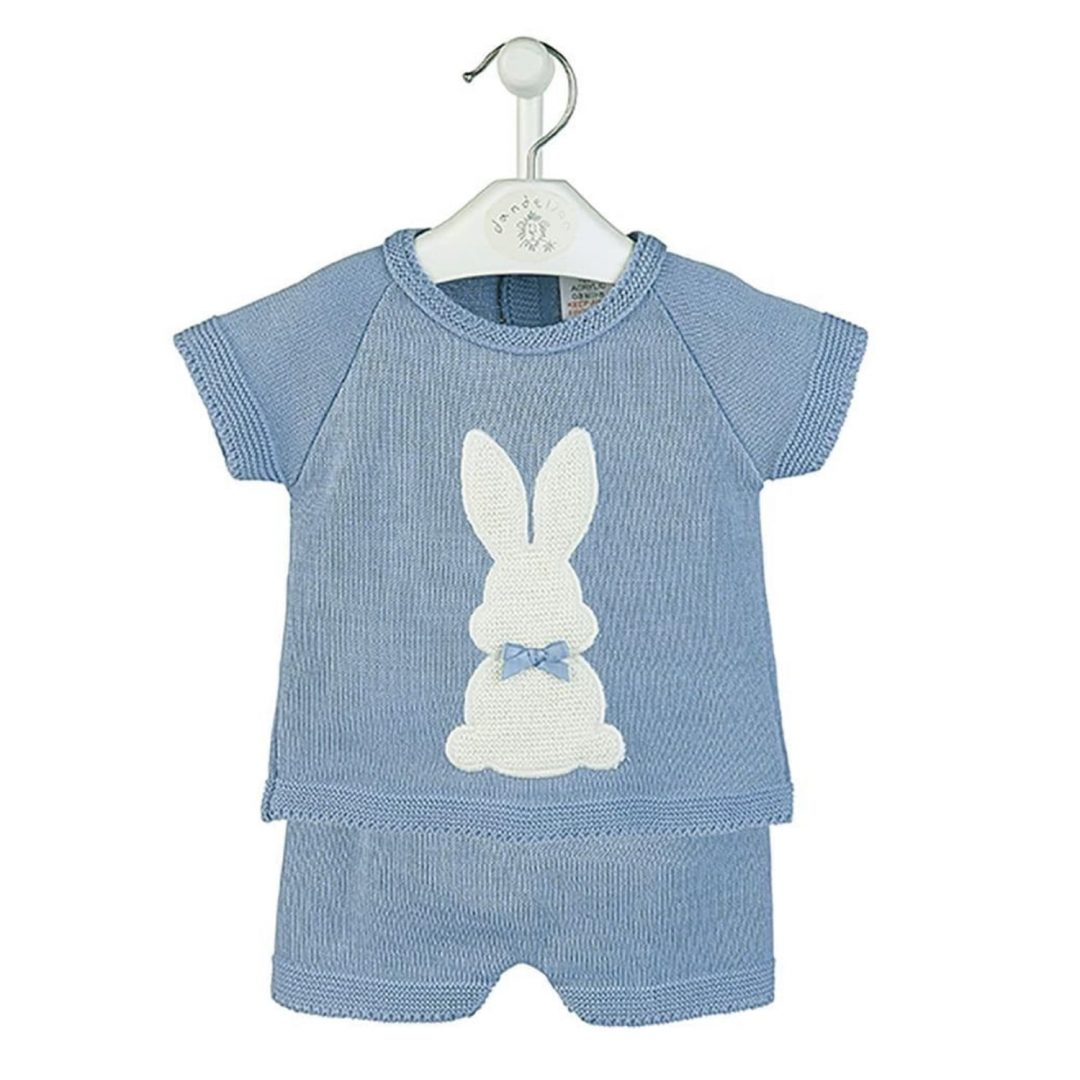 Blue Bunny Top and Shorts set-min