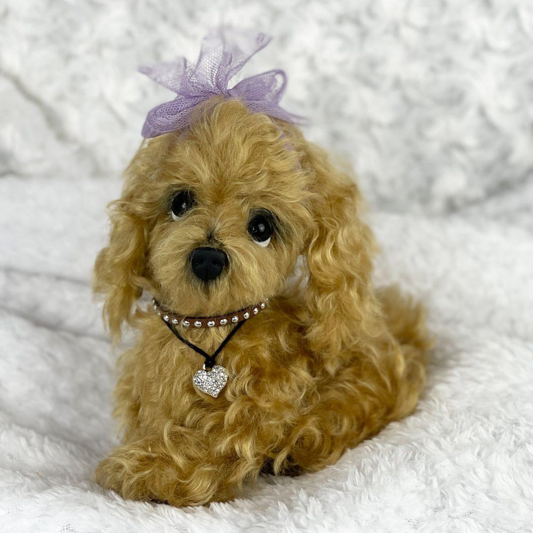 Chanel Artist Puppy-min