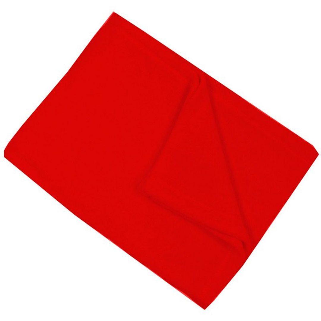 Red Fleece Blanket