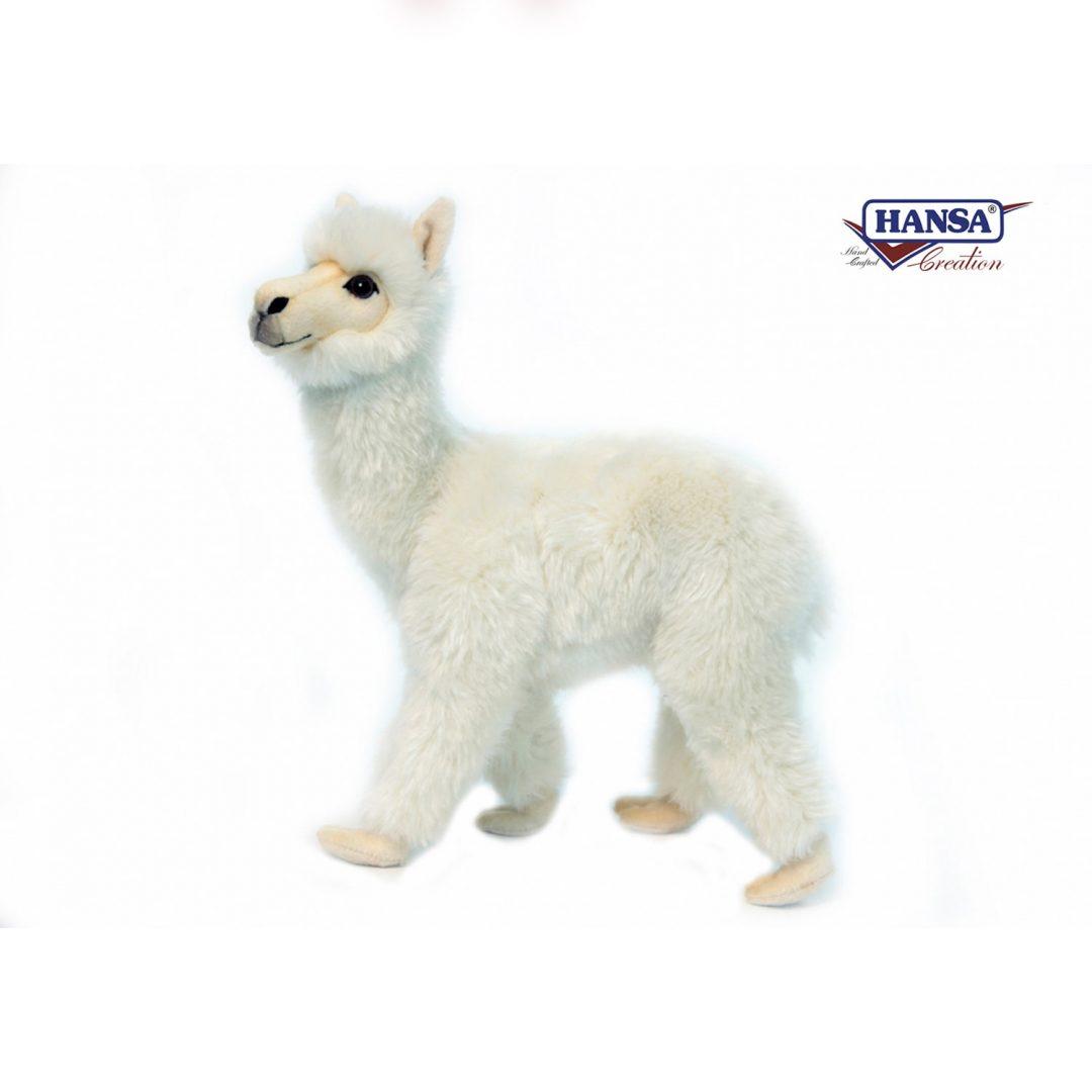 Alpaca Hansa 6024-min (1)