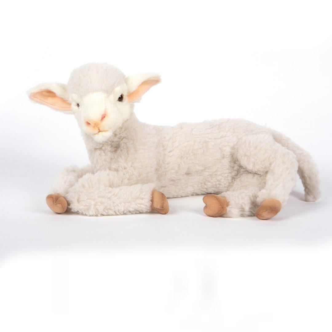 Lamb Hansa 6536 Mary Shortle 2-min (1)