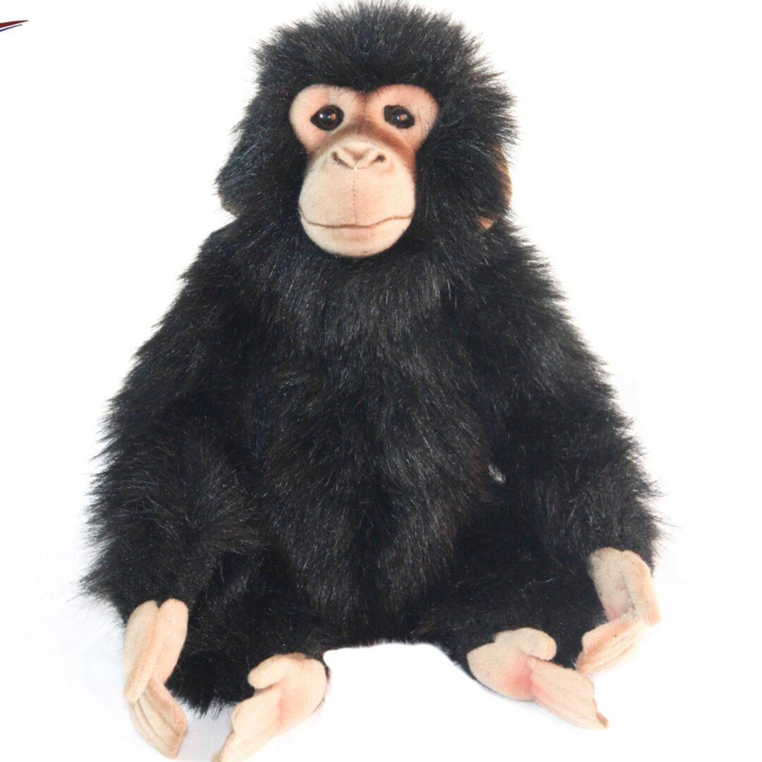 Hansa Chimp-min