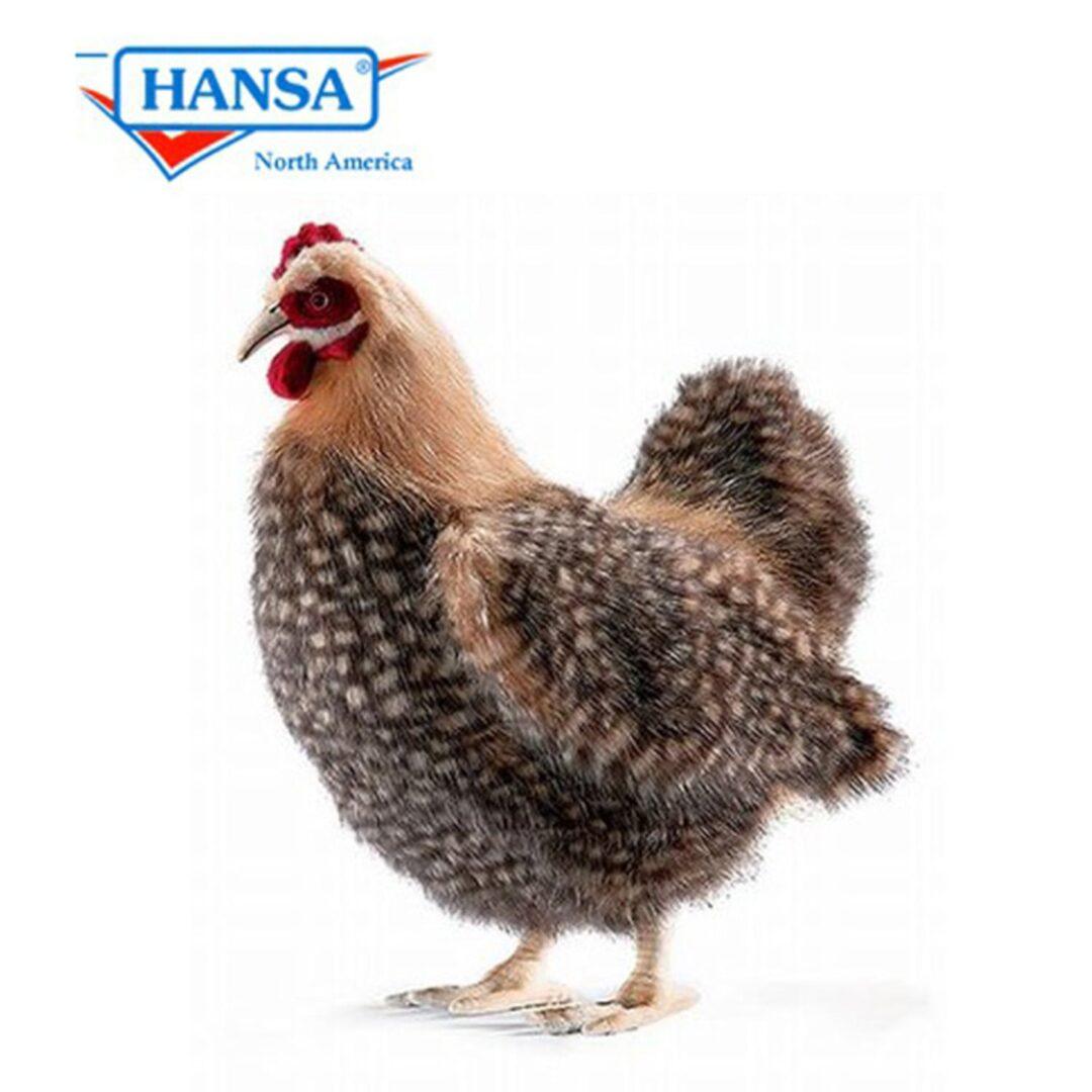 Hansa Hen-min