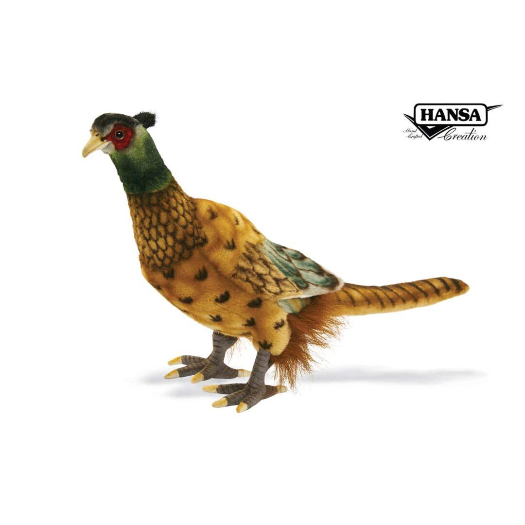 Pheasant Hansa-min