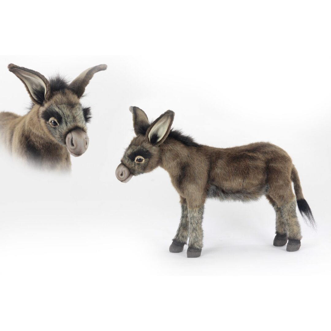 Hansa Donkey-min