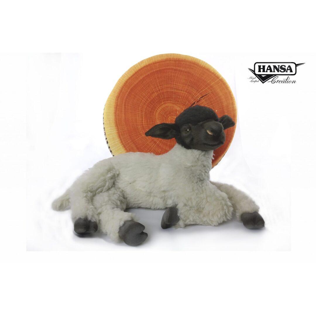Hansa Suffolk Sheep Laying-min