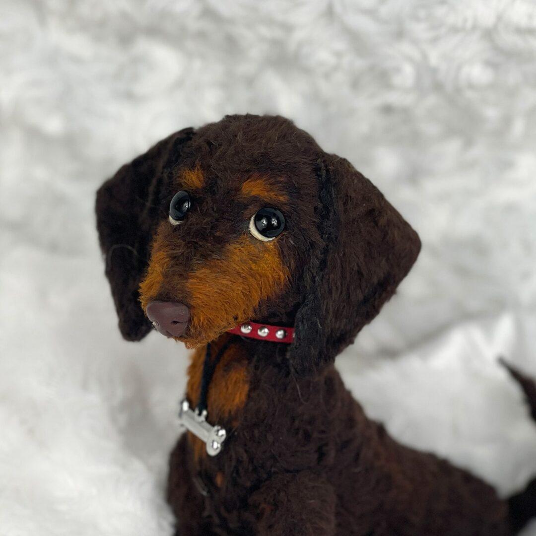 Pella Artist Puppy 1-min